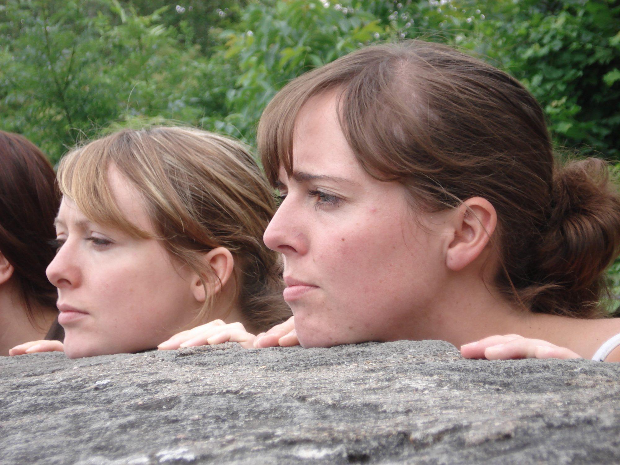 2007 - Mauerblümchen