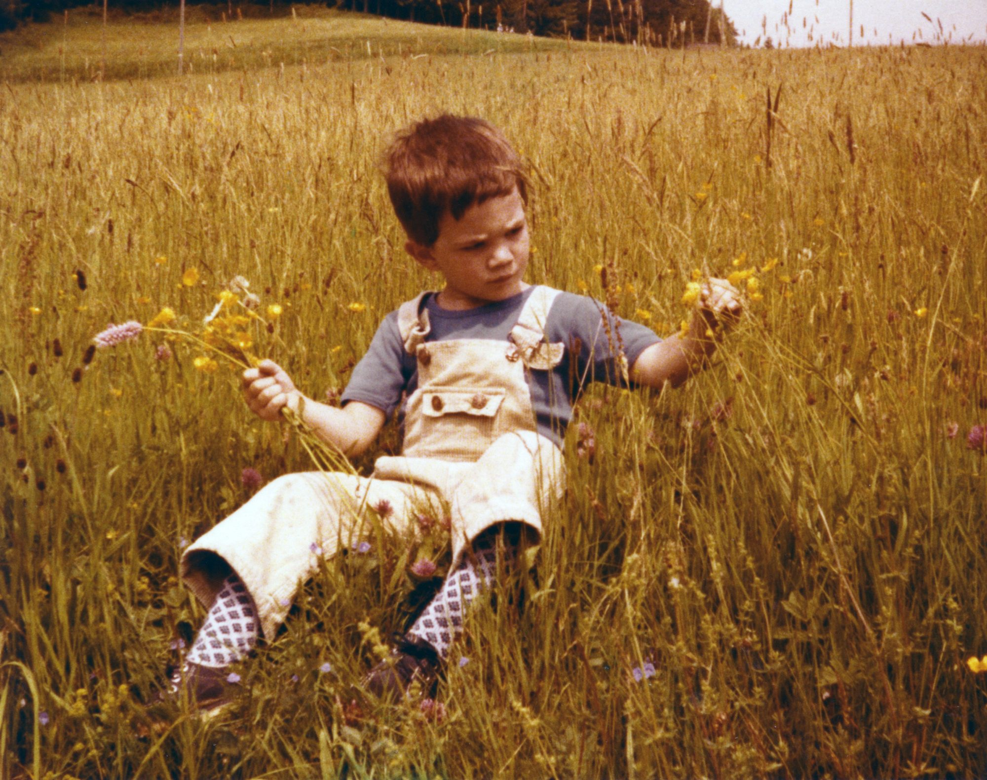 1980 - Thilo in der Blumenwiese