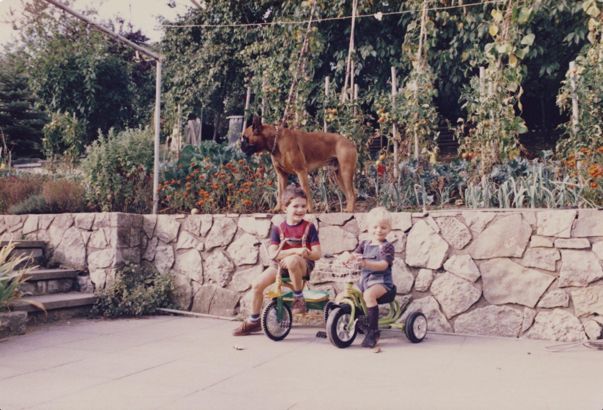 August 1982 - Im Garten Künzelsau, Askan, Thilo und Florian.