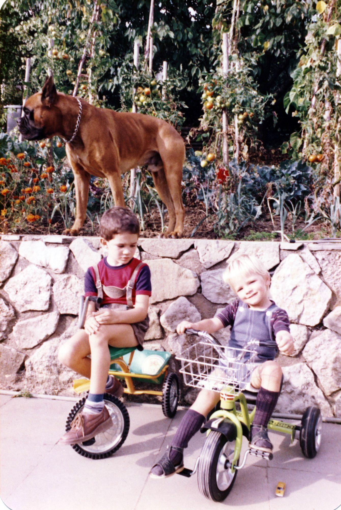 Im August 1982. Florian mit brandneuem Dreirad. Thilo kann seinen neidischen Blick nicht für sich behalten... :)