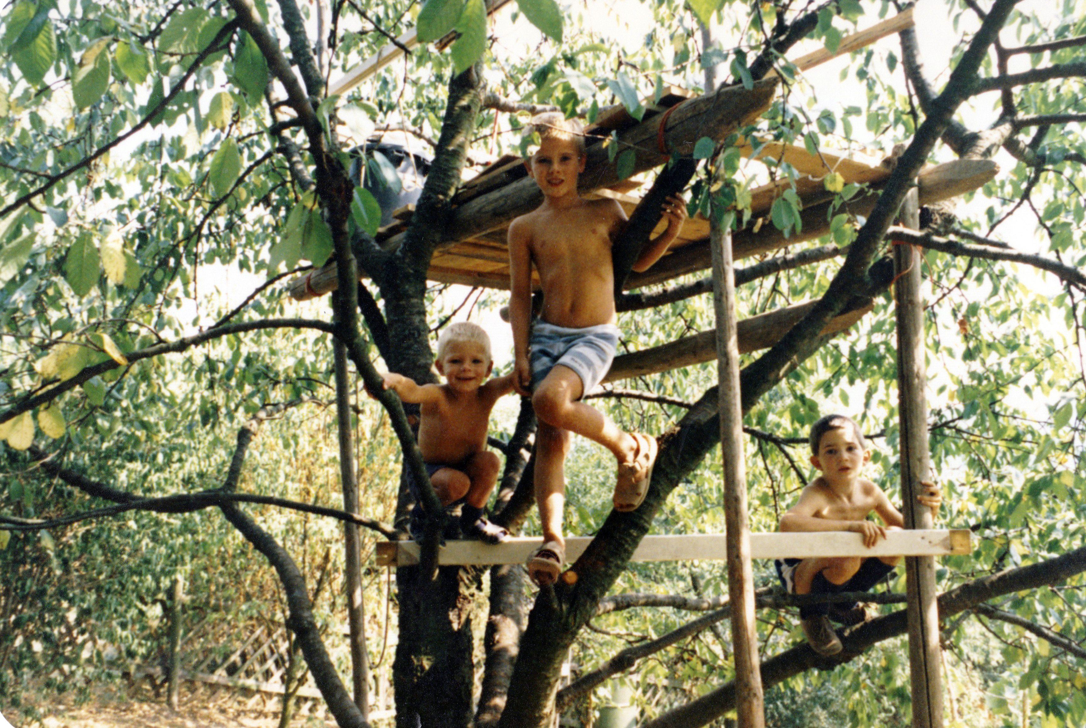 Florian, Michael und Thilo im Baumhaus in Künzelsau.