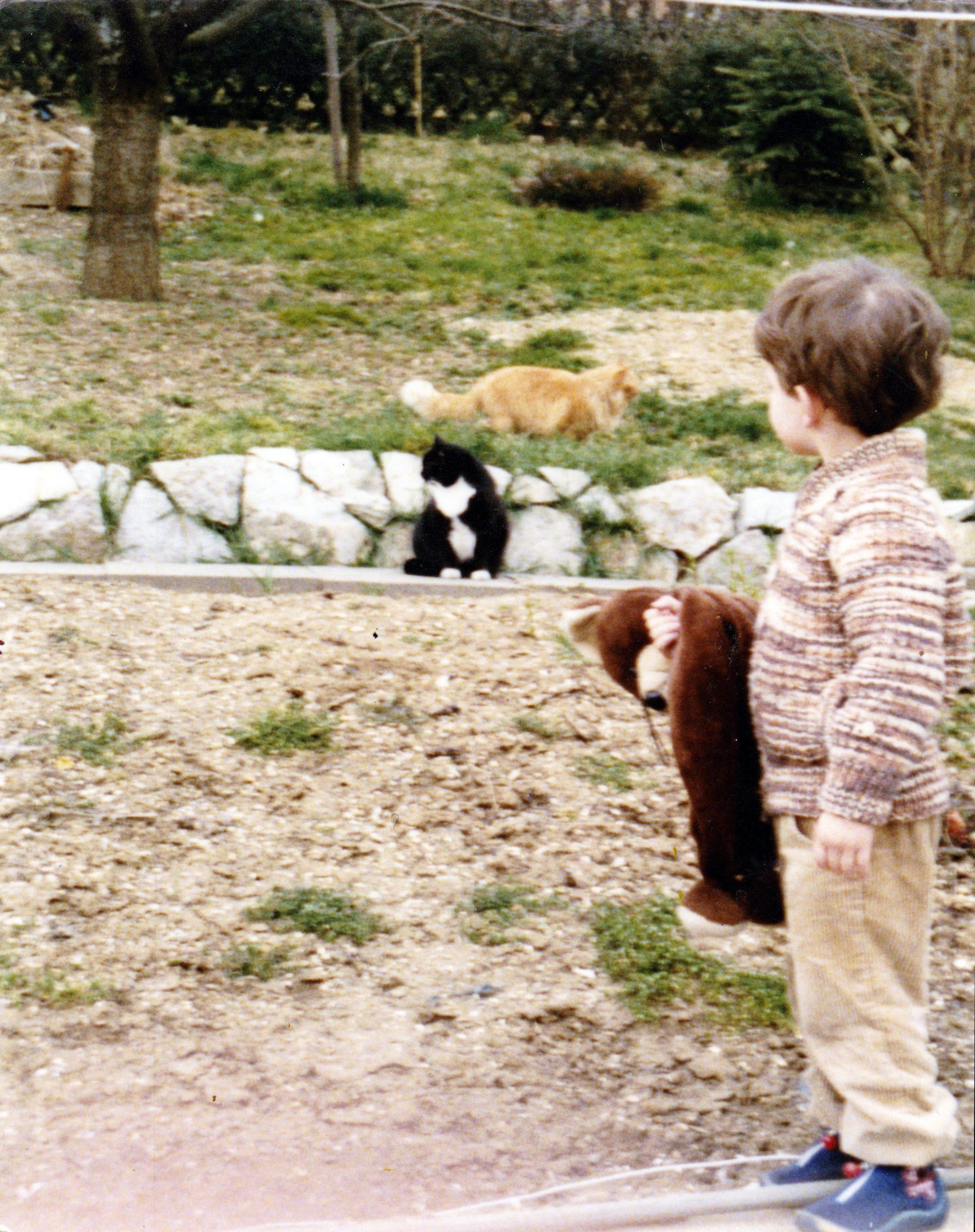 1982 - Die Miezn Morle und Walli