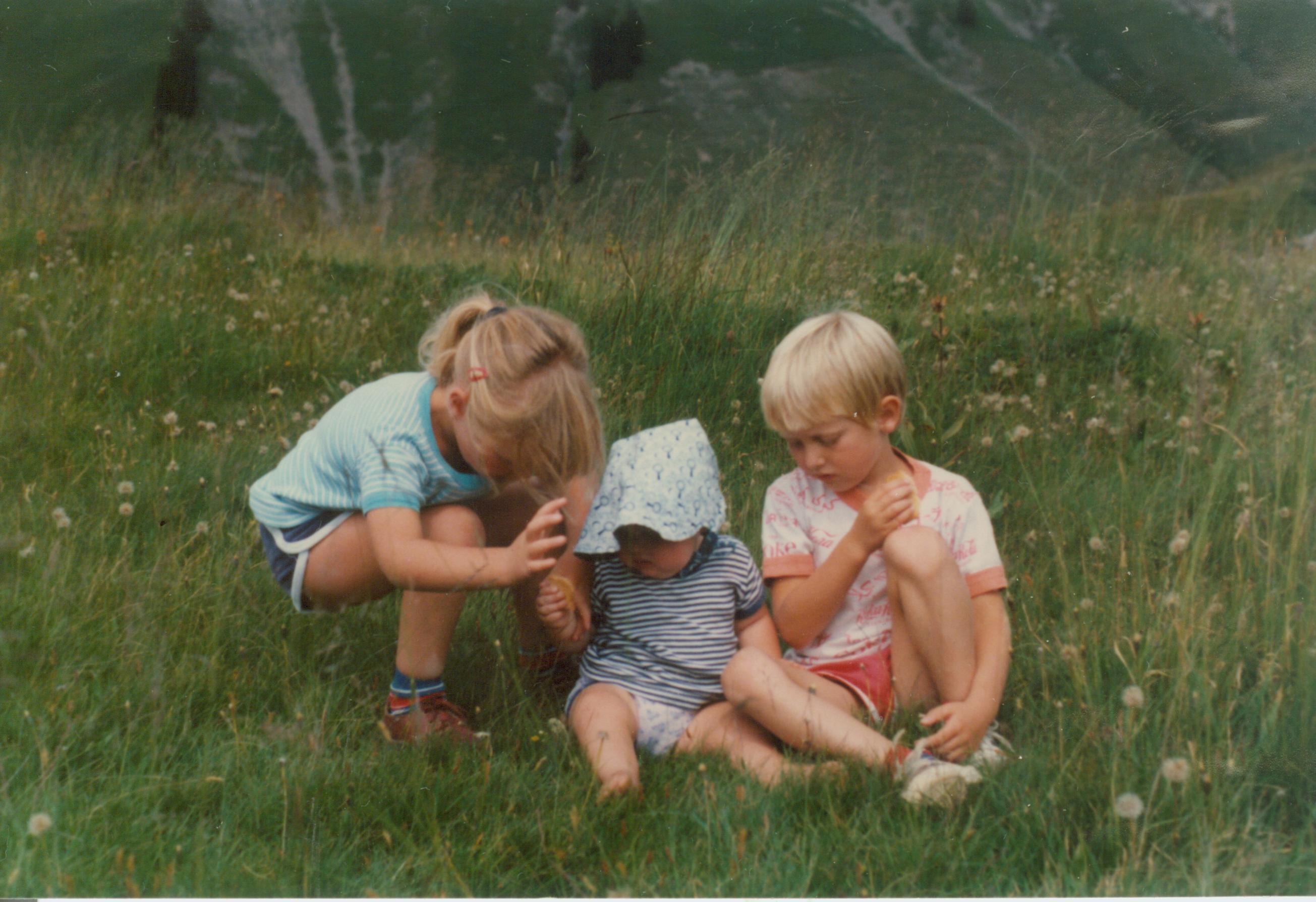 1984 - Wiesenidylle