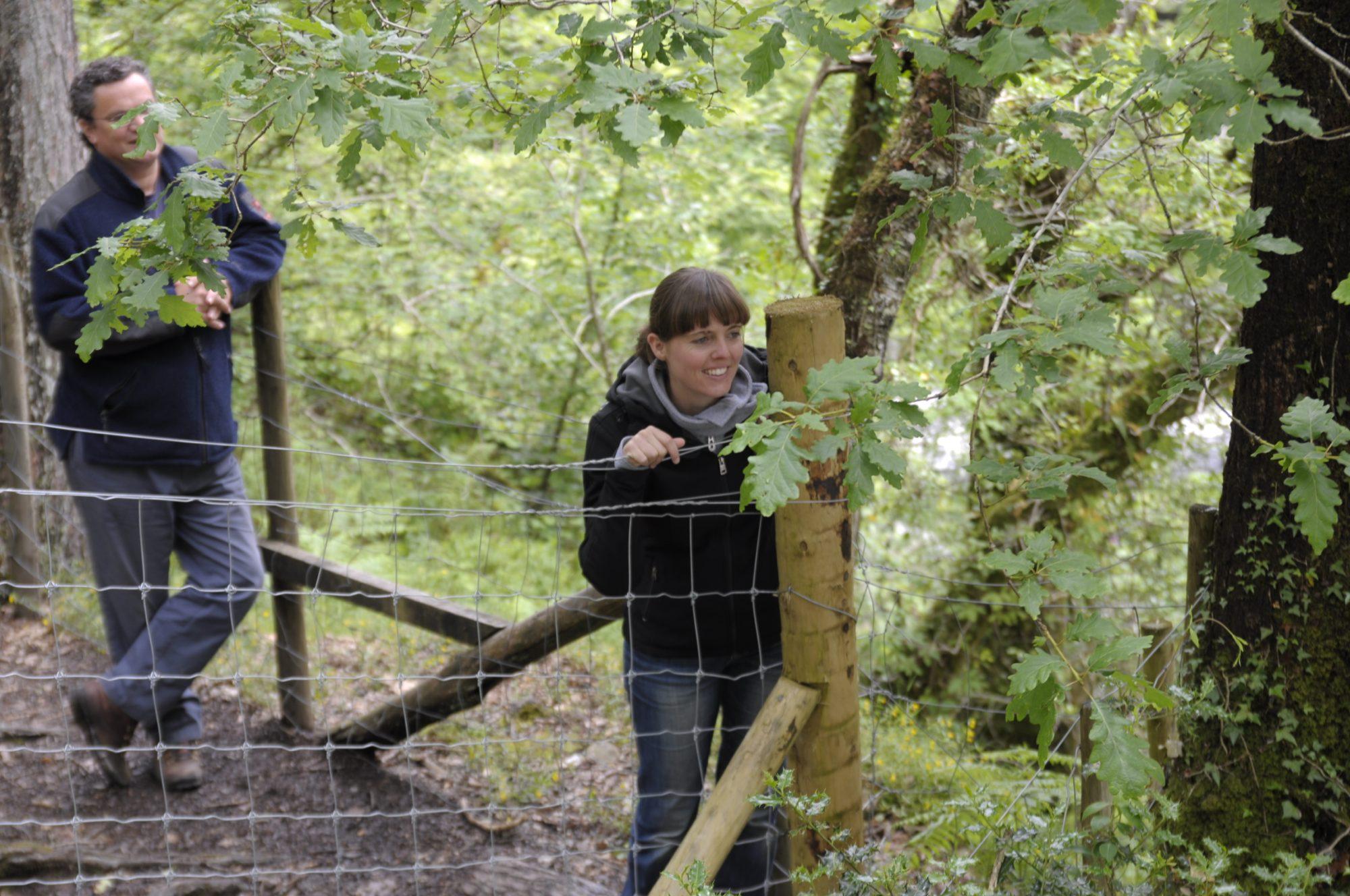 Juni 2011 – In Wales. Peter und Luisa beobachten.