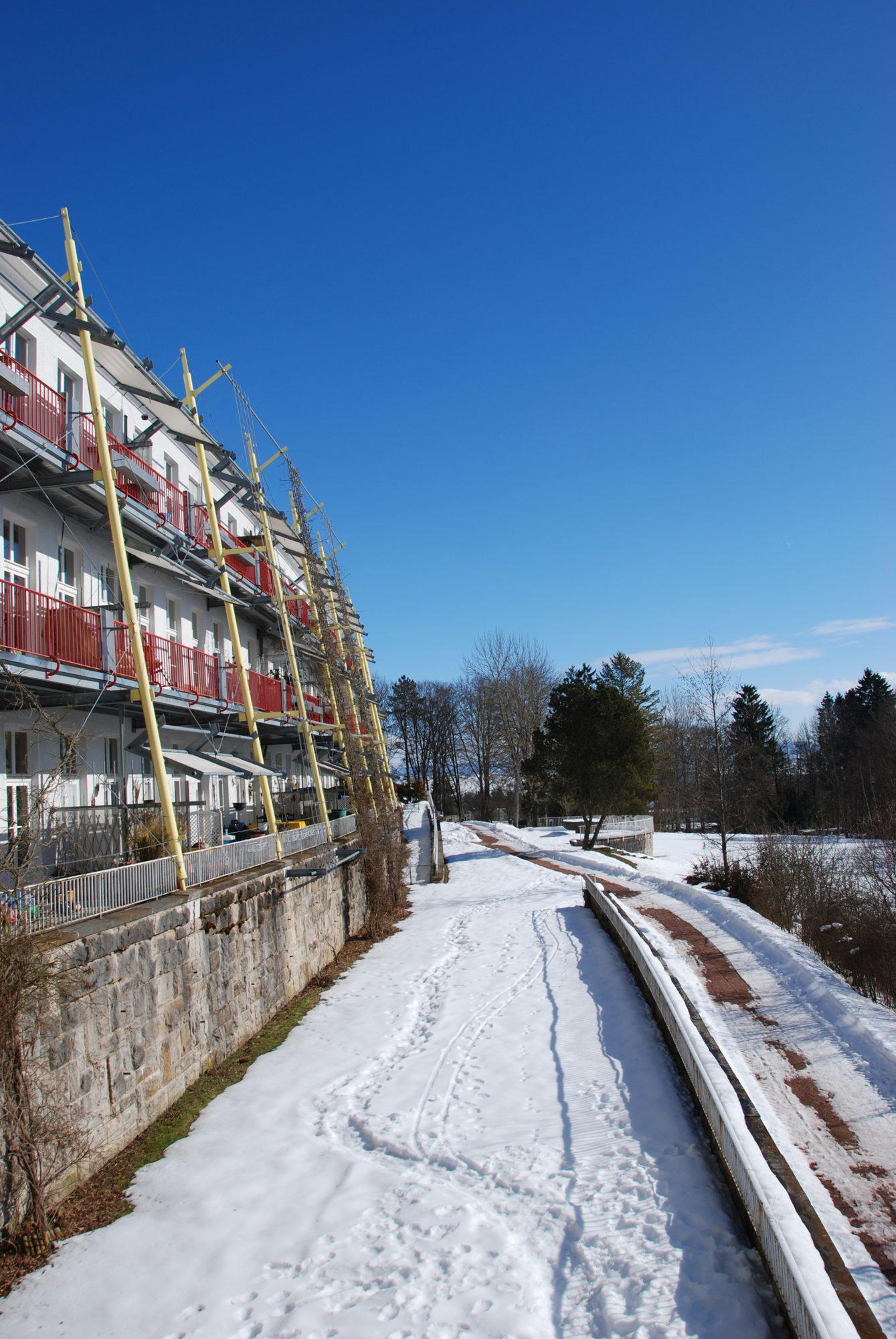 Februar 2010 - In Donauärschlingen.