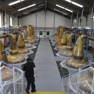 Glen Fiddich Distillery 2011 - Die vergorene Würze wird in Brennblasen erhitzt, der Alkohol verdampft und kondensiert an den oberen Bögen der Brennblasen.