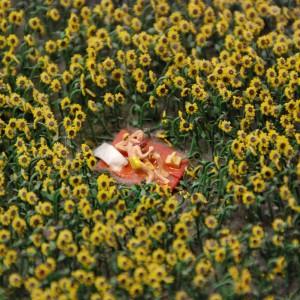 Hamburg - Miniatur Wunderland, Sonnenblumen...